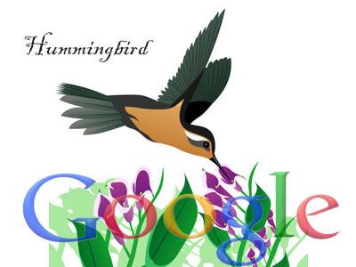 גוגל Hummingbird